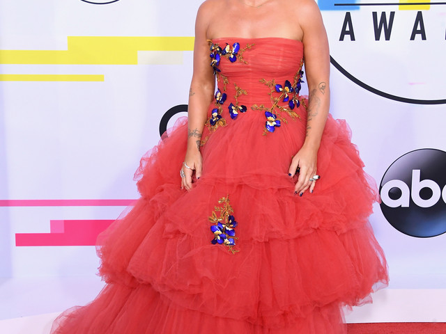 Pour les American Music Awards 2017, Demi Lovato arrive sur le tapis rouge avec une invitée très politique