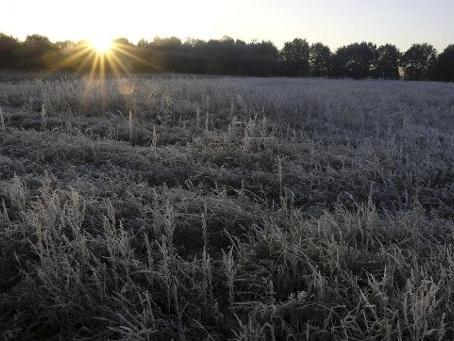 Un début de semaine sec et calme avec des gelées nocturnes