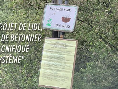 """Patricia et ses voisins CONTRE l'implantation d'un Lidl à Rixensart: """"Le projet est de BÉTONNER un magnifique écosystème"""""""