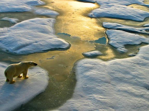 Une nouvelle étude montre que les océans se réchauffent plus vite que prévu