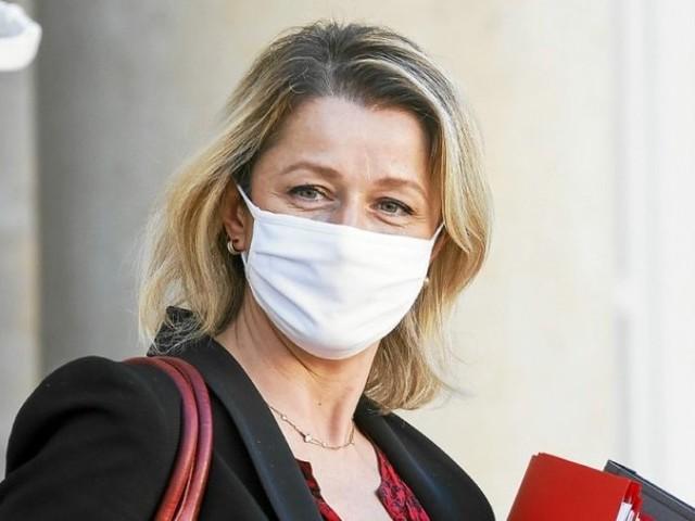 Le gouvernement va créer un «délit d'écocide» pour punir les atteintes à l'environnement