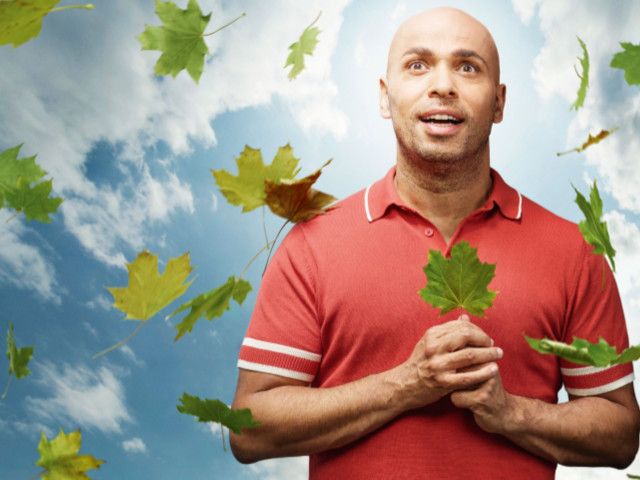 Inédit: La saison Tree de PLATANE arrive sur Canal+ à partir du 9 décembre