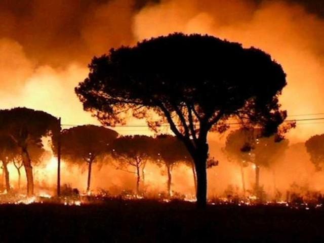 Plus de 2.000 personnes évacuées à cause d'un incendie dans le sud de l'Espagne