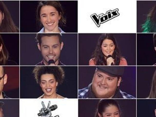 «La voix» : et de quatre pour les auditions à l'aveugle