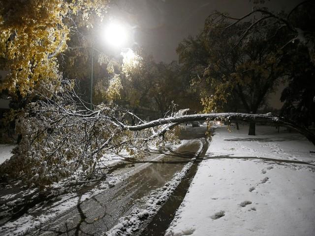 Tempête de neige: des milliers de Manitobains sans électricité