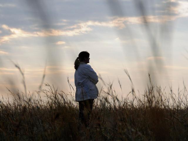 Cette découverte ouvre la voie à une meilleure guérison des séquelles post-traumatiques