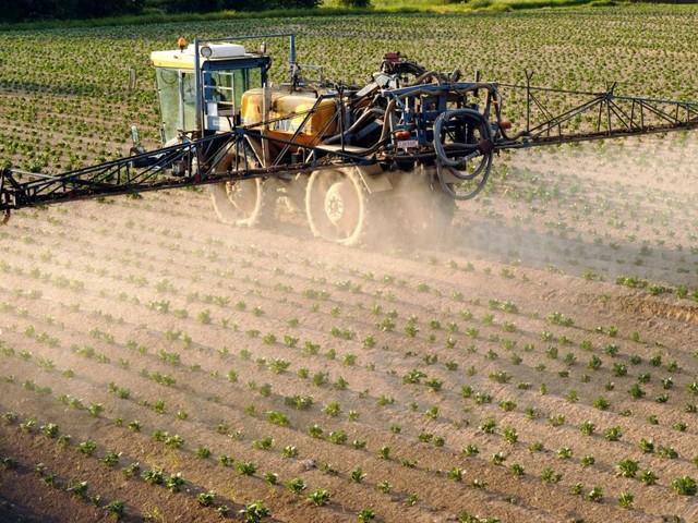 Les dangers du chlorpyrifos, pesticide toujours autorisé