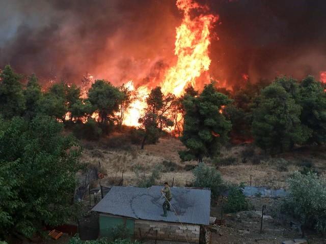 Les feux de forêt en Grèce, des catastrophes àrépétition