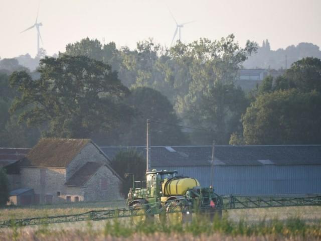 Un juge des référés valide deux arrêtés anti-pesticides, première victoire selon les maires