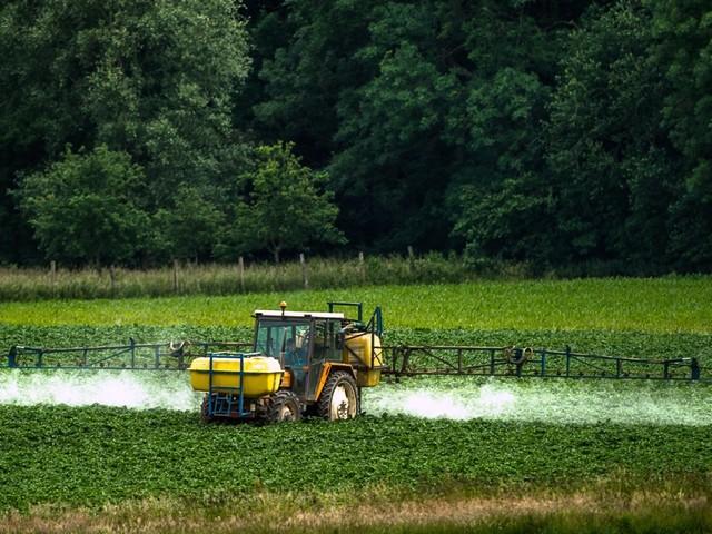 Sortie du glyphosate, un objectif difficile à tenir et qui pourrait coûter cher aux agriculteurs