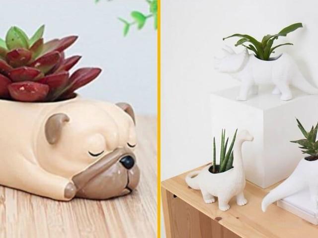 Top 50+ des pots et cache-pots pour mettre tes plus belles plantes
