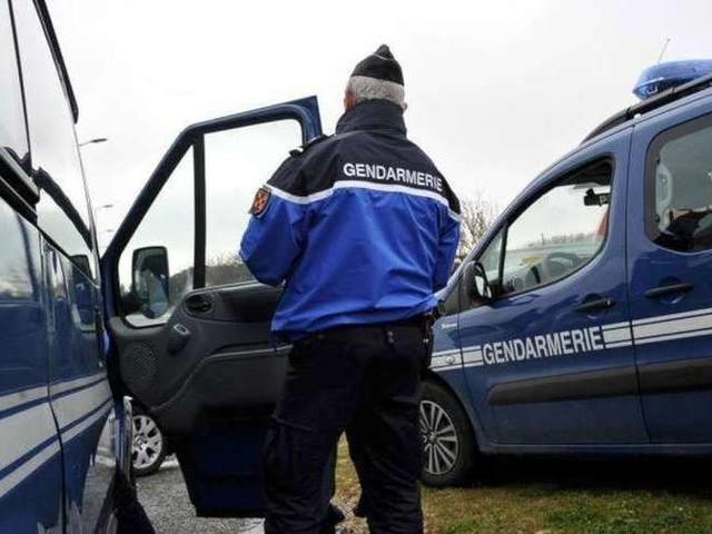 Loiret : le corps d'une femme victime de violences retrouvé dans une forêt