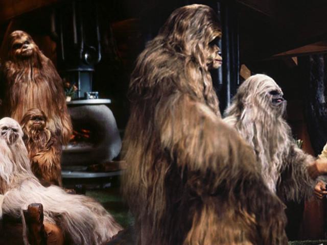 Bientôt un remake du Star Wars Holiday Special ?
