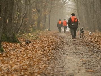 Sécurisation autour de la chasse: la prévention porte ses fruits