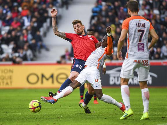 LOSC : Galtier s'incline devant la défense en fer de Montpellier