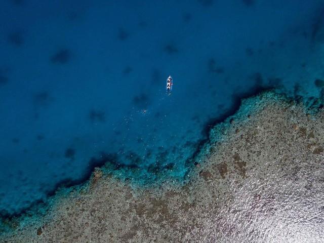 Un documentaire inédit consacré le 10 mars à la richesse du lagon Calédonien.