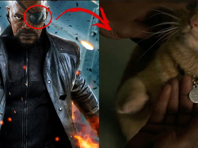 Captain Marvel : un chat à l'origine de la perte de l'oeil de Nick Fury ?