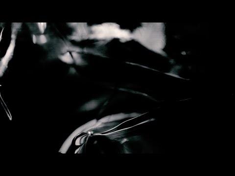 video690-poppy ackroyd