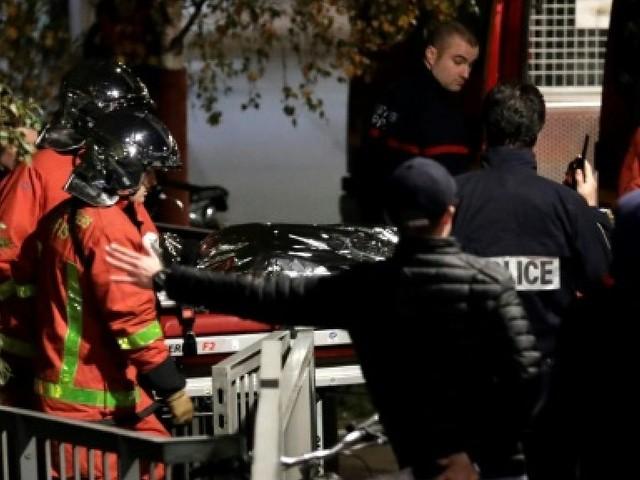 Tigresse abattue à Paris: le cirque porte plainte