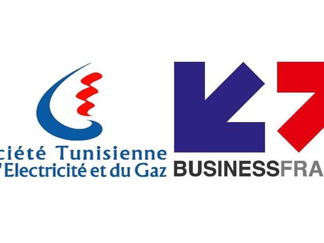 Business France - STEG : Echanges et partage dans le domaine des énergies renouvelables