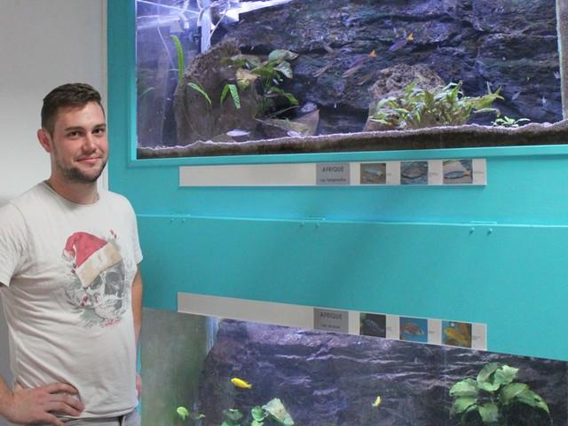 Rouen. Rencontre avec Maxime, un passionné : « Un aquarium, c'est un tableau vivant »