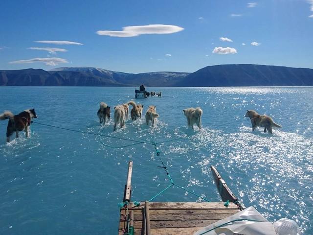 Pourquoi Trump laisse-t-il entendre qu'il veut acheter le Groenland?