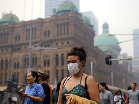 Feux de forêt : l'est de l'Australie asphyxié par la fumée des incendies