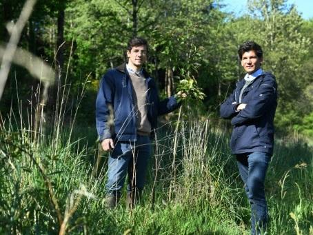 EcoTree, la start-up qui vend des arbres pour sauver les forêts
