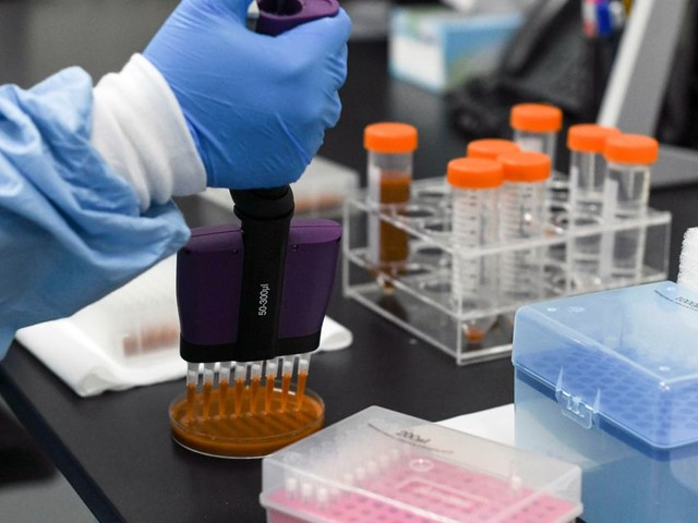 Du vaccin anti-Covid aux seringues, une guerre logistique se prépare