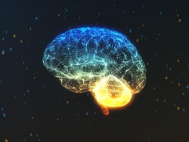 Autisme : une nouvelle théorie sur le fonctionnement du cerveau