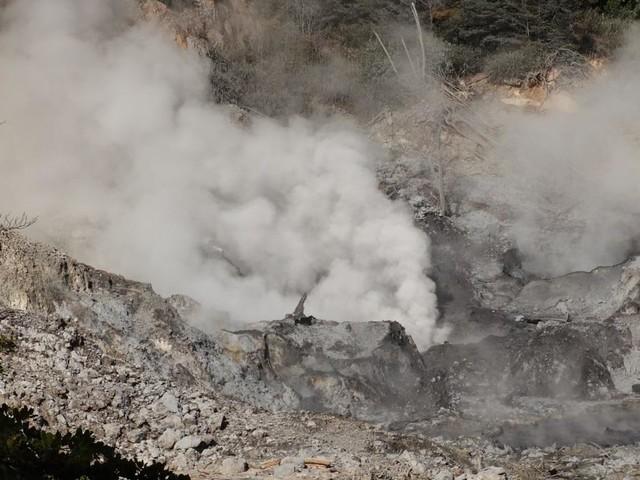 Séismes, éruptions volcaniques : quelles sont les zones les plus à risque en France ?