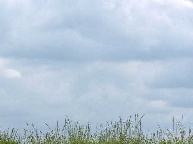 Nuageux et doux : la météo de ce jeudi en Lorraine et Franche-Comté