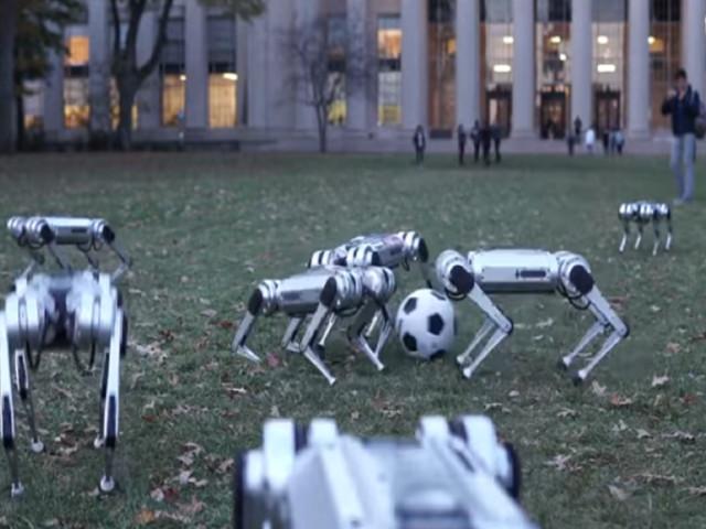 Oubliez la Ligue 1, ce robot du MIT est capable de jouer au foot