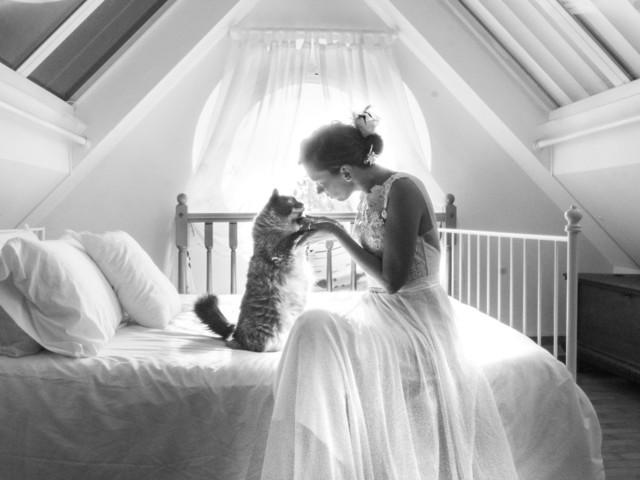 Ces photos de jeunes mariés avec leur chat sont à ronronner de plaisir