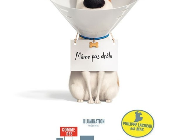 Comme des bêtes 2- The Secret Life of Pets 2- Chris Renaud, Jonathan Del Val