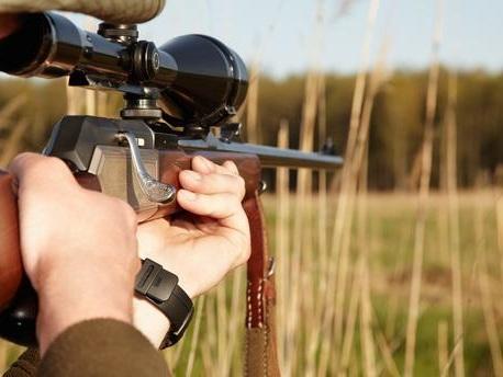 Épinglés sur les réseaux sociaux, des gérants d'un Super U quittent l'enseigne après la révélation de photos de chasse en Afrique