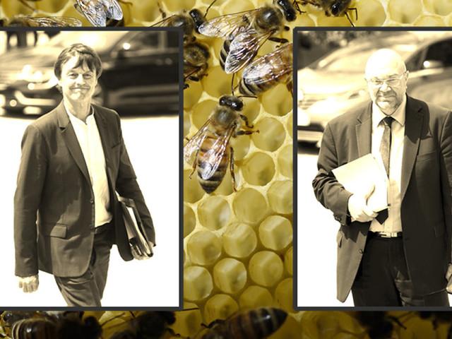 """Néonicotinoïdes: Premier couac au gouvernement entre Nicolas Hulot et Stéphane Travert sur l'interdiction des pesticides """"tueurs d'abeilles"""""""
