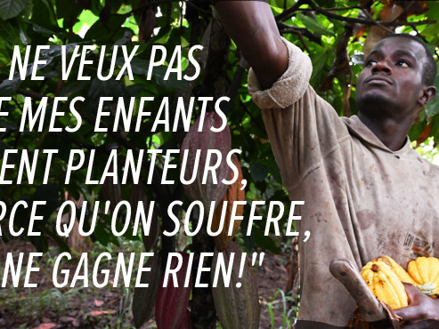 La récolte du cacao commence en Côte d'Ivoire: avec un prix très bas, les petits planteurs ne gagnent pas grand-chose