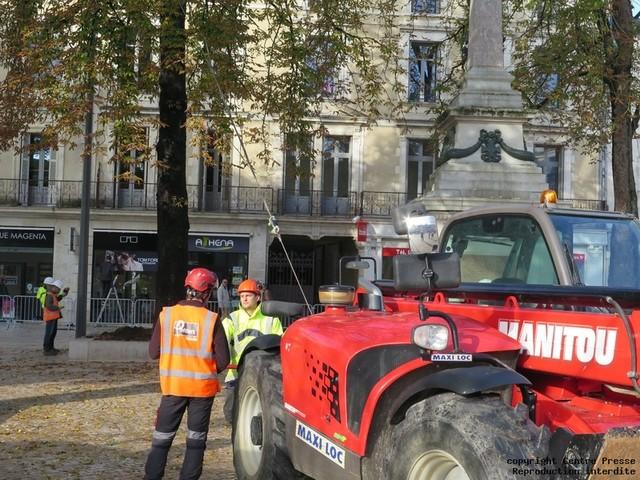 Poitiers : la résistance des arbres testée au square de la République