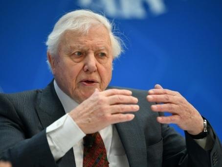 GB: la Reine récompense Attenborough pour sa série Planète bleue