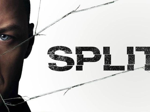 Split leader des audiences du dimanche 19 janvier 2020 en première partie de soirée.