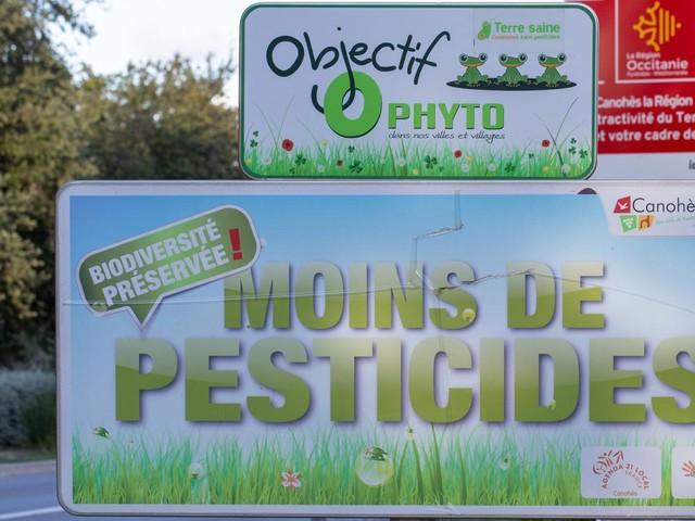 Pourquoi des scientifiques dénoncent-ils l'usage de pesticides à base de SDHI ?