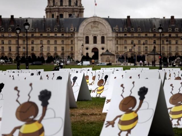 """""""577 abeilles"""" contre les néonicotinoïdes"""