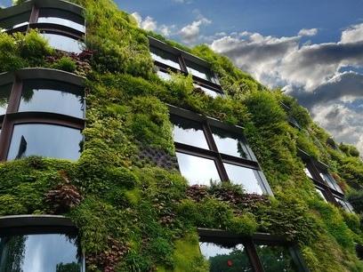 Et si on s'inspirait du vivant pour changer la ville ?