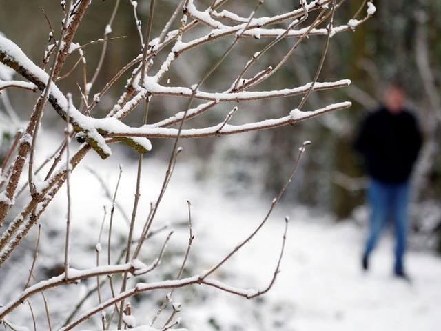 Neige: rétablissement du courant promis vendredi pour 1000 foyers encore coupés