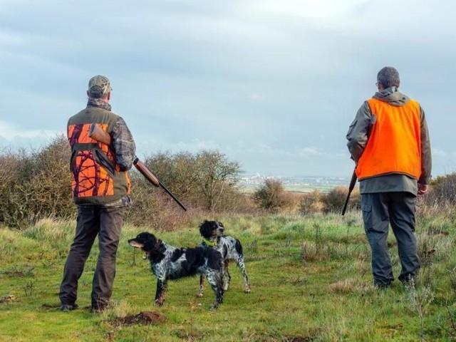 Reprise de la chasse dans l'Orne: quelles sont les règles de sécurité à respecter pour éviter les accidents