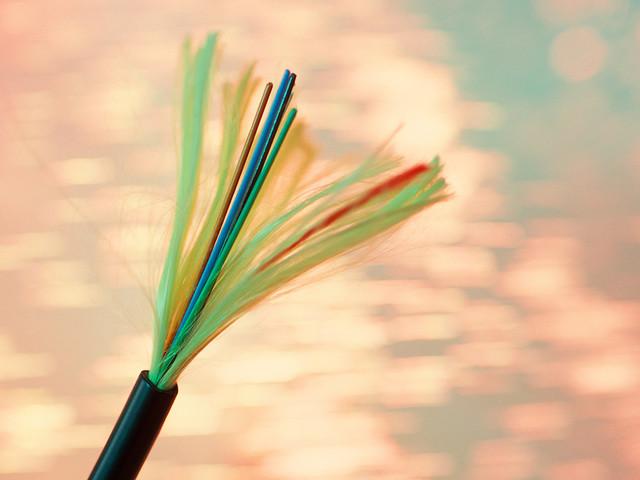 Fibre optique : Free arrive sur les réseaux d'Axione