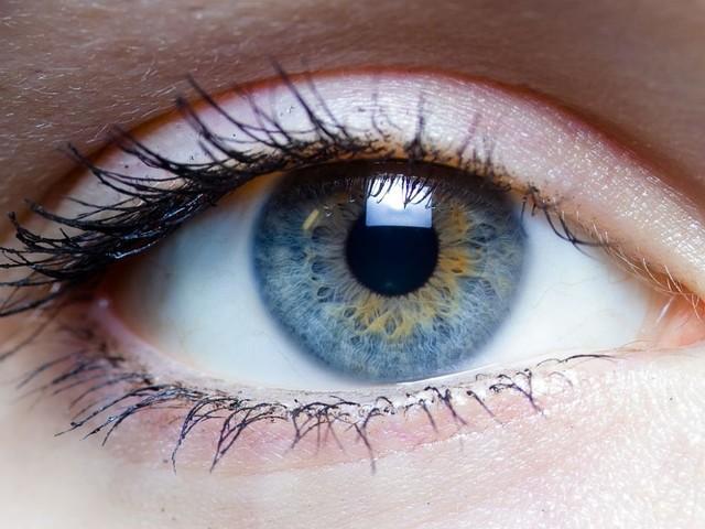 Maladies de la rétine : un traitement pour préserver la vision