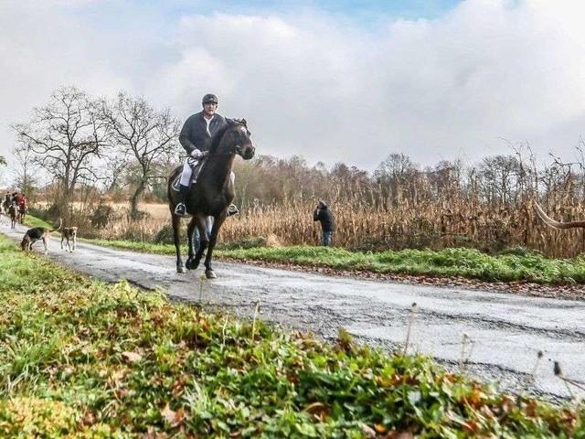 L'Édition du soir - Chasse à courre sans gibier, une tradition à cheval sur les principes