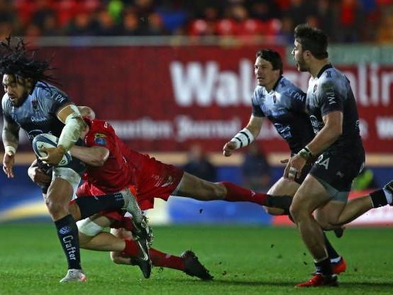 Rugby - CE - Coupe d'Europe : Toulon, battu chez les Scarlets, qualifié pour les quarts comme meilleur deuxième